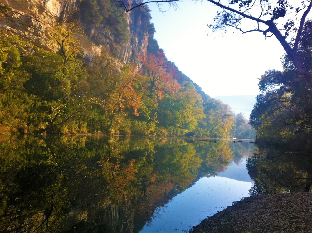 River with rock bluff and fall trees