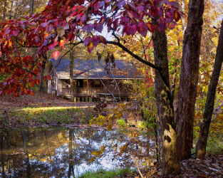 The Evening Star Lodge, exterior, with fall leaves and creek